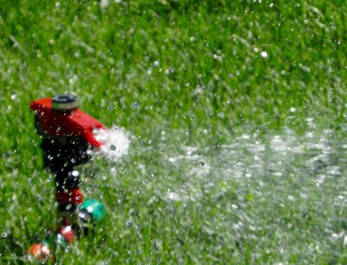 6 Signs That Your Irrigation System Needs Repairing
