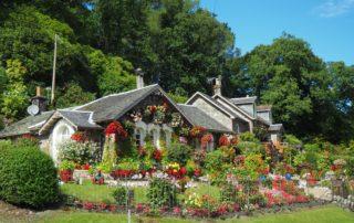 Top 5 Benefits of Sprinkler Irrigation Systems In Your Garden