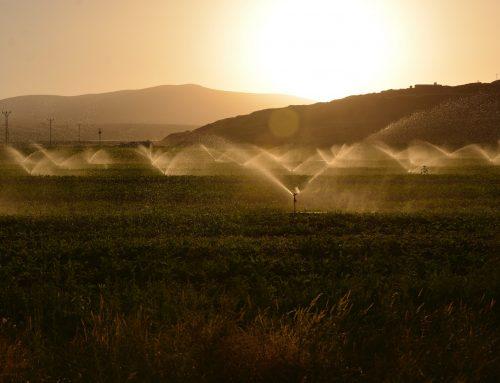 5 Steps To Prepare Your Sprinkler System For Winter