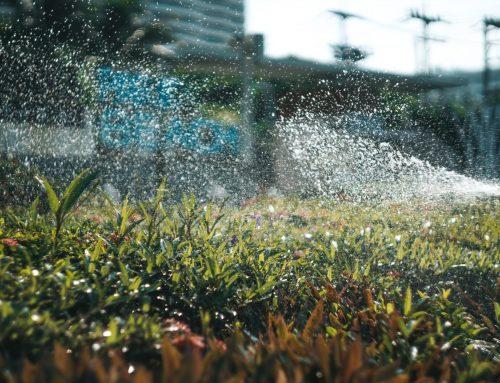 Do Smart Sprinkler Systems Help Water Conservation?