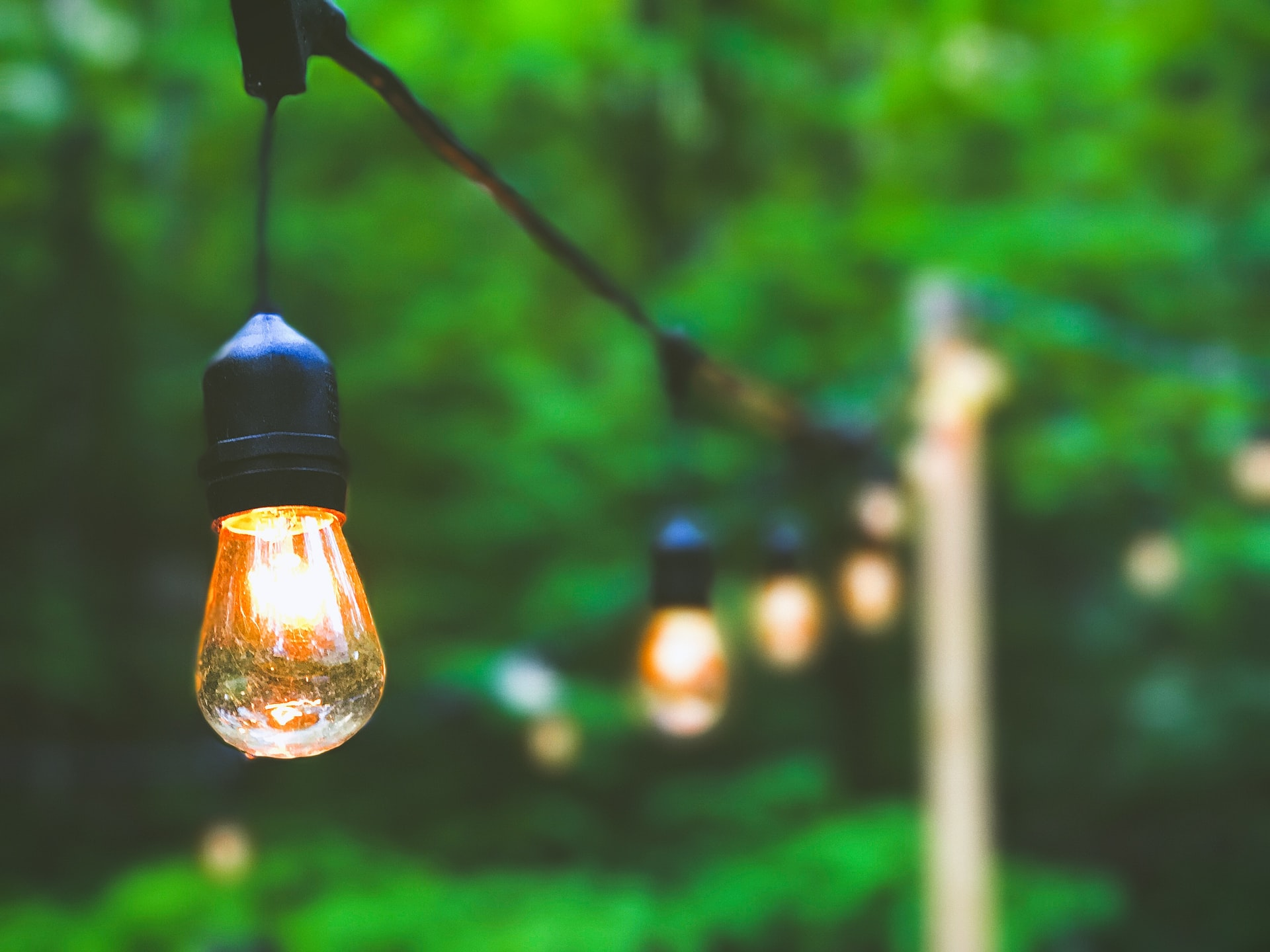 5 Tips To Help You Choose The Perfect Landscape Lighting For Your Garden